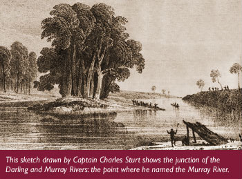 Sturt illustration at the junction of Darling and Murray River - Discover Murray River