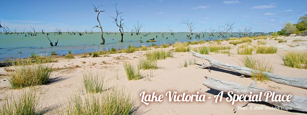 Lake Victoria - Discover Murray River